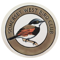 Somerset West Bird Club