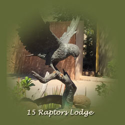 15 Raptors Lodge