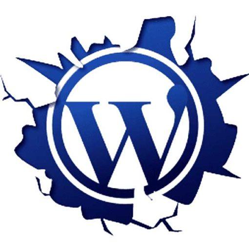 Basic Wordpress Course