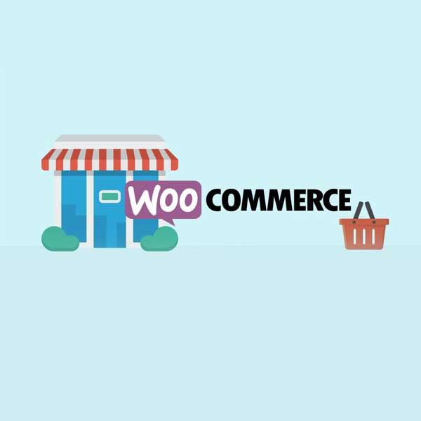 Basic WooCommerce Course